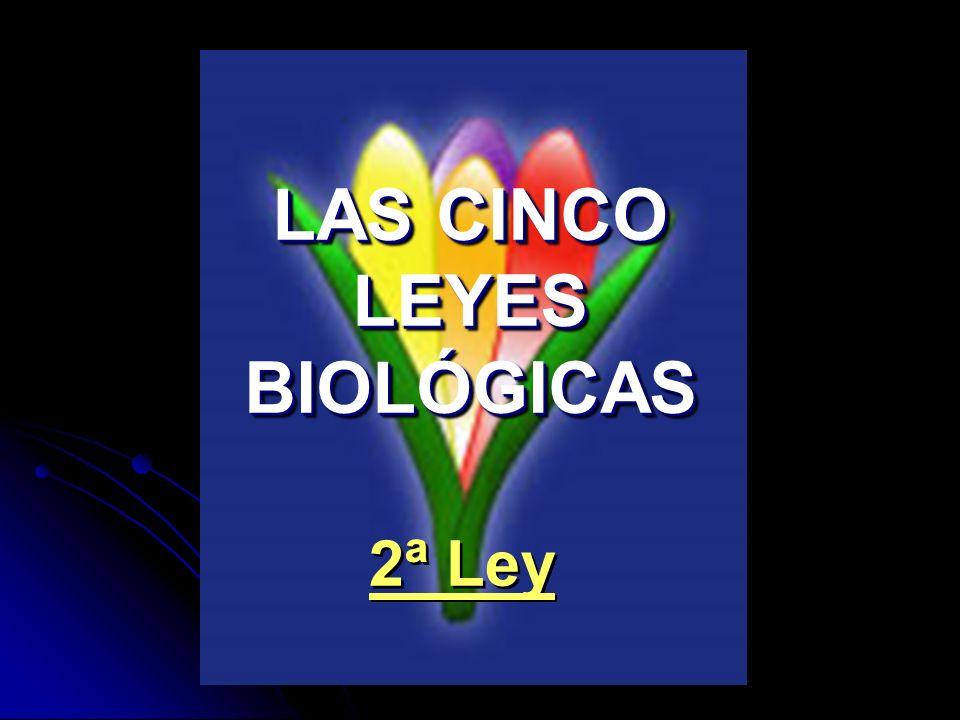 LAS CINCO LEYES BIOLÓGICAS 2ª Ley