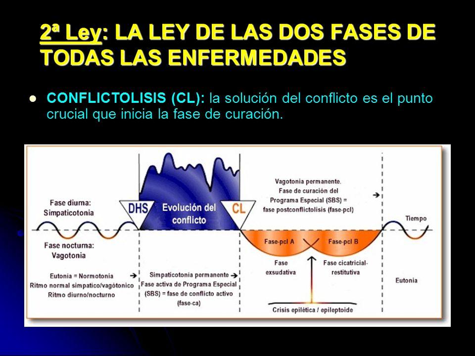 2ª Ley: LA LEY DE LAS DOS FASES DE TODAS LAS ENFERMEDADES CONFLICTOLISIS (CL): la solución del conflicto es el punto crucial que inicia la fase de curación.