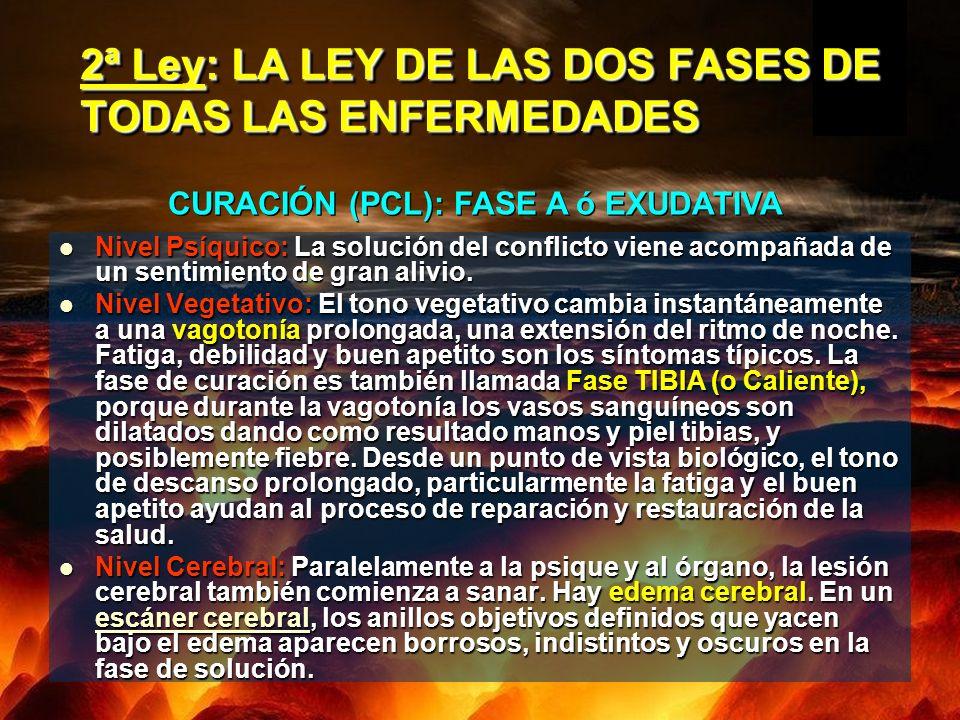 2ª Ley: LA LEY DE LAS DOS FASES DE TODAS LAS ENFERMEDADES Nivel Psíquico: La solución del conflicto viene acompañada de un sentimiento de gran alivio.
