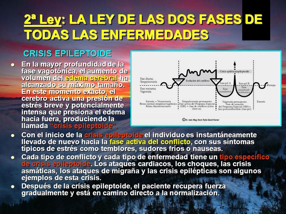 2ª Ley: LA LEY DE LAS DOS FASES DE TODAS LAS ENFERMEDADES En la mayor profundidad de la fase vagotónica, el aumento de volumen del edema cerebral ha alcanzado su máximo tamaño.