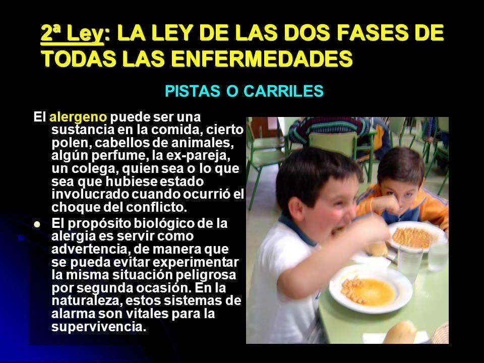 2ª Ley: LA LEY DE LAS DOS FASES DE TODAS LAS ENFERMEDADES El alergeno puede ser una sustancia en la comida, cierto polen, cabellos de animales, algún