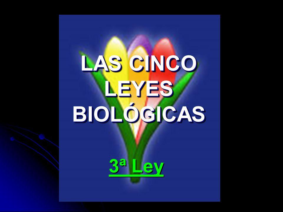 LAS CINCO LEYES BIOLÓGICAS 3ª Ley