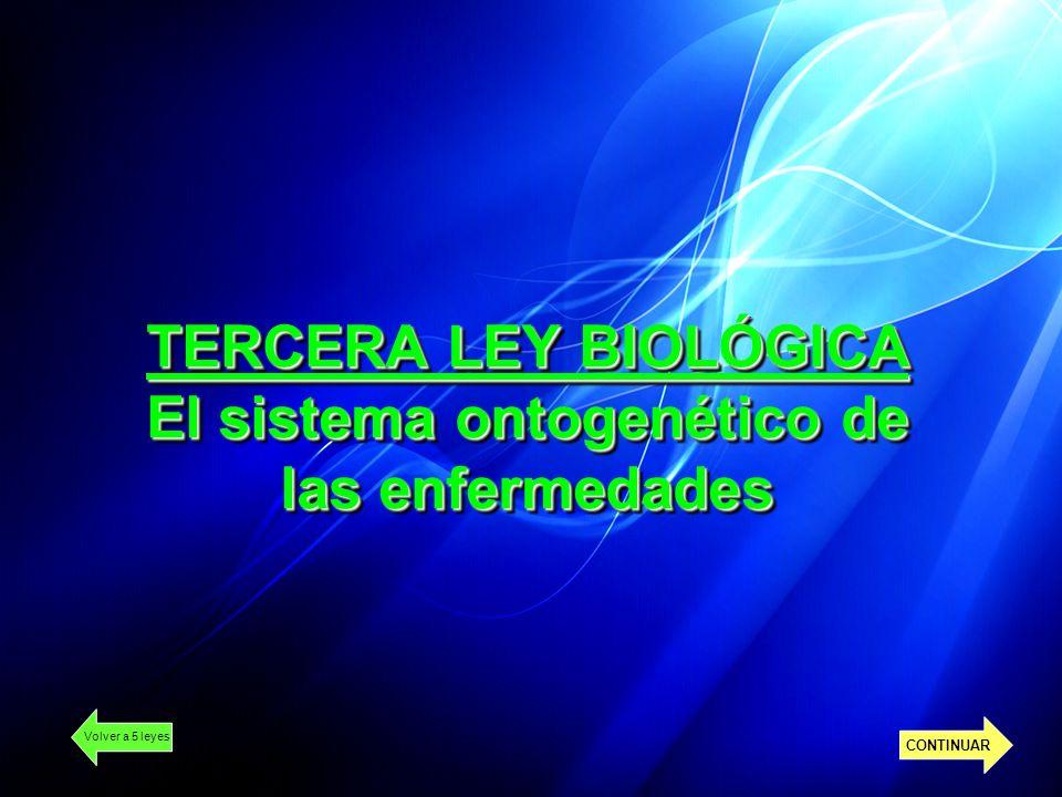 TERCERA LEY BIOLÓGICA El sistema ontogenético de las enfermedades Volver a 5 leyes CONTINUAR