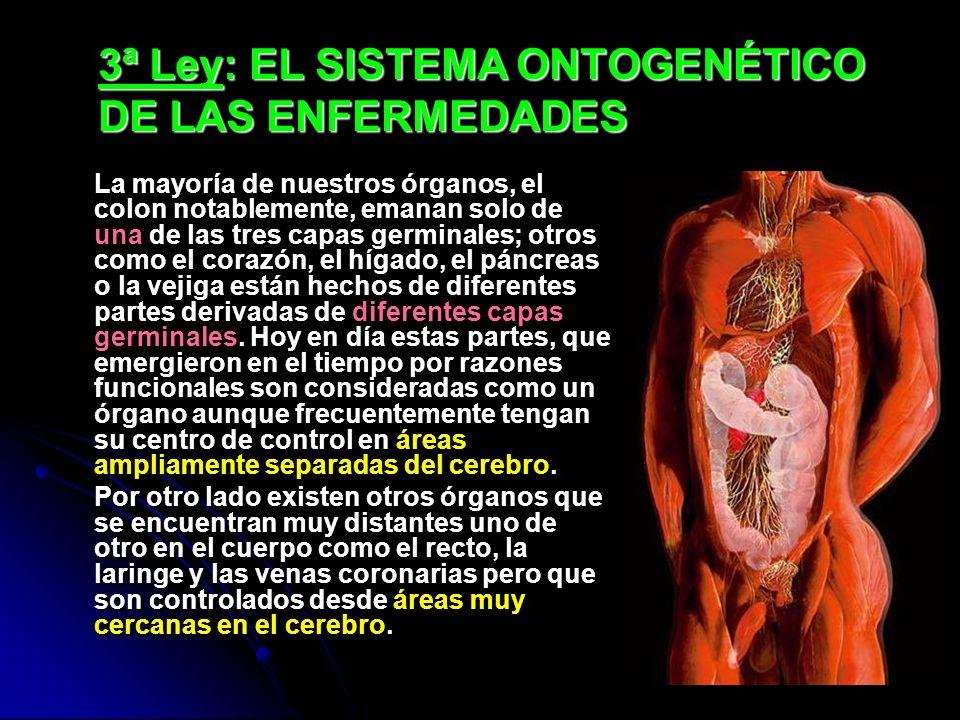 3ª Ley: EL SISTEMA ONTOGENÉTICO DE LAS ENFERMEDADES La mayoría de nuestros órganos, el colon notablemente, emanan solo de una de las tres capas germin
