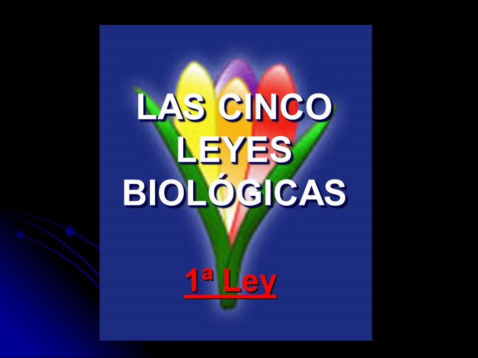 LAS CINCO LEYES BIOLÓGICAS 1ª Ley
