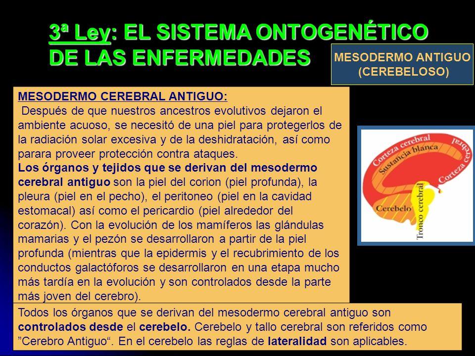 3ª Ley: EL SISTEMA ONTOGENÉTICO DE LAS ENFERMEDADES MESODERMO CEREBRAL ANTIGUO: Después de que nuestros ancestros evolutivos dejaron el ambiente acuos