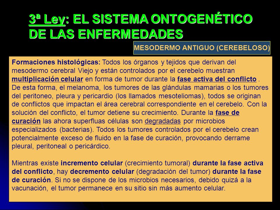 3ª Ley: EL SISTEMA ONTOGENÉTICO DE LAS ENFERMEDADES Formaciones histológicas: Todos los órganos y tejidos que derivan del mesodermo cerebral Viejo y e