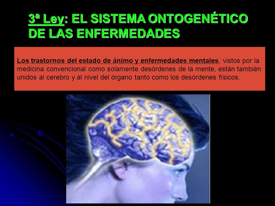 3ª Ley: EL SISTEMA ONTOGENÉTICO DE LAS ENFERMEDADES Los trastornos del estado de ánimo y enfermedades mentales, vistos por la medicina convencional como solamente desórdenes de la mente, están también unidos al cerebro y al nivel del órgano tanto como los desórdenes físicos.
