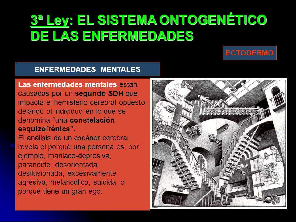 3ª Ley: EL SISTEMA ONTOGENÉTICO DE LAS ENFERMEDADES Las enfermedades mentales están causadas por un segundo SDH que impacta el hemisferio cerebral opuesto, dejando al individuo en lo que se denomina una constelación esquizofrénica.
