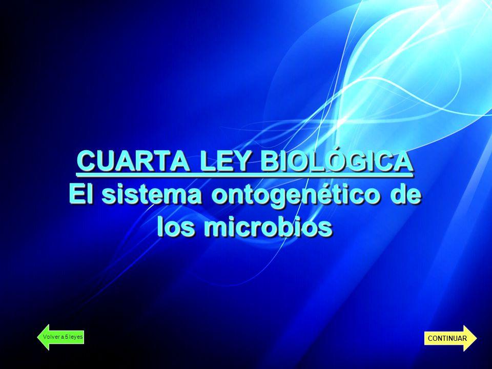 CUARTA LEY BIOLÓGICA El sistema ontogenético de los microbios Volver a 5 leyes CONTINUAR