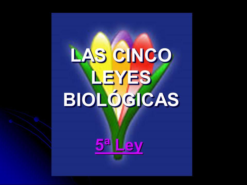 LAS CINCO LEYES BIOLÓGICAS 5ª Ley