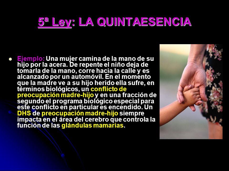 5ª Ley: LA QUINTAESENCIA Ejemplo: Una mujer camina de la mano de su hijo por la acera.