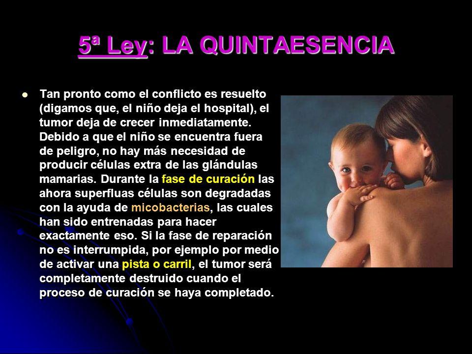 5ª Ley: LA QUINTAESENCIA Tan pronto como el conflicto es resuelto (digamos que, el niño deja el hospital), el tumor deja de crecer inmediatamente. Deb