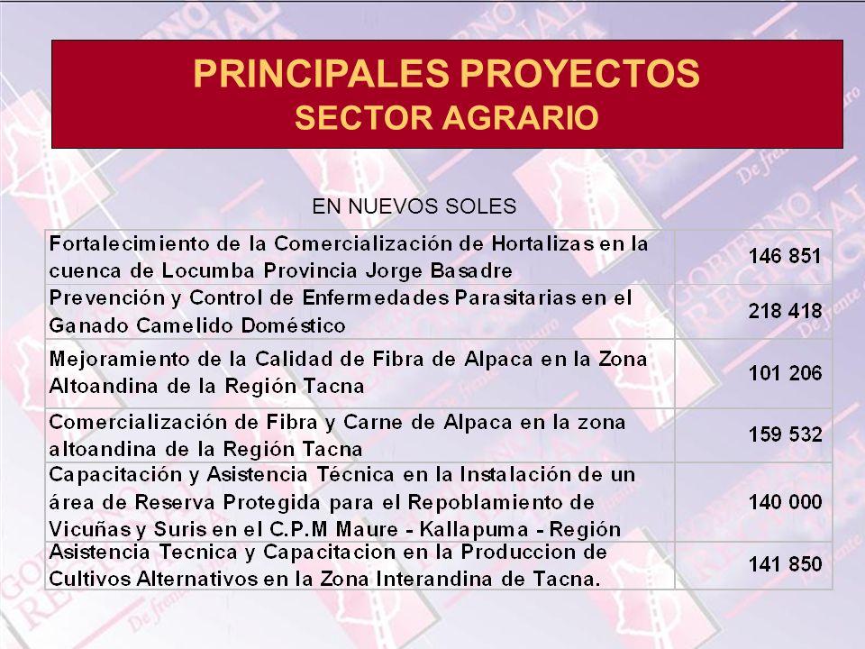 PRINCIPALES PROYECTOS SECTOR AGRARIO EN NUEVOS SOLES