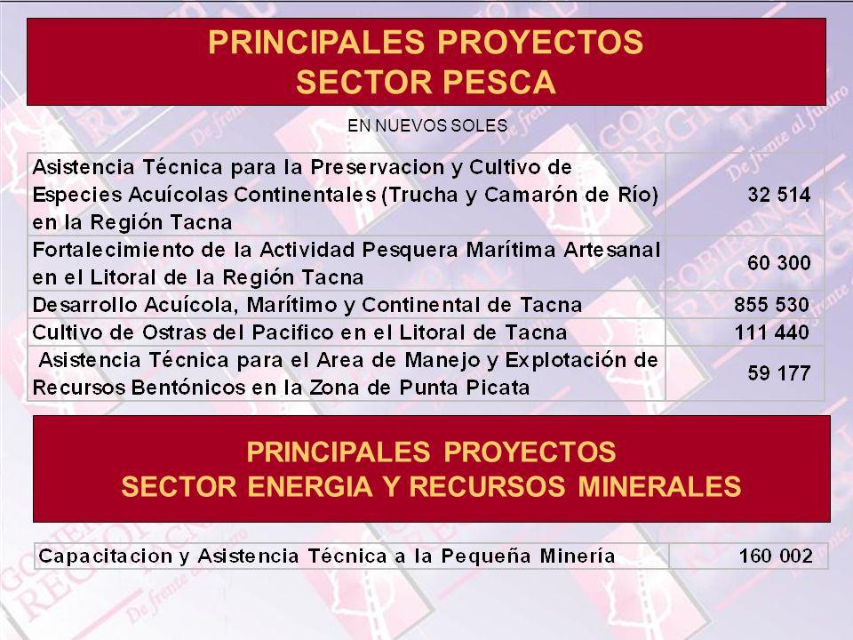 PRINCIPALES PROYECTOS SECTOR PESCA PRINCIPALES PROYECTOS SECTOR ENERGIA Y RECURSOS MINERALES EN NUEVOS SOLES