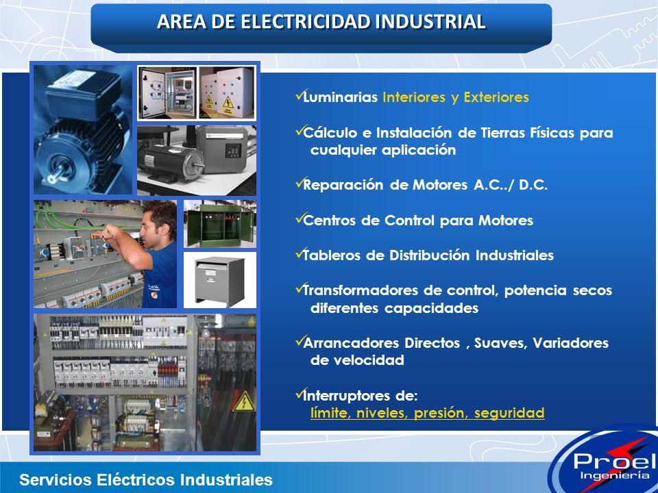Servicios Eléctricos Industriales Luminarias Interiores y Exteriores Cálculo e Instalación de Tierras Físicas para cualquier aplicación Reparación de Motores A.C../ D.C.
