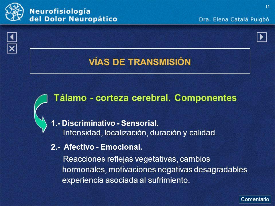 Tálamo - corteza cerebral. Componentes VÍAS DE TRANSMISIÓN 1.- Discriminativo - Sensorial. Intensidad, localización, duración y calidad. 2.- Afectivo