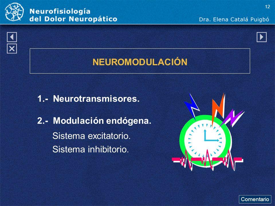 NEUROMODULACIÓN 1.- Neurotransmisores. 2.- Modulación endógena. Sistema excitatorio. Sistema inhibitorio. Comentario 12