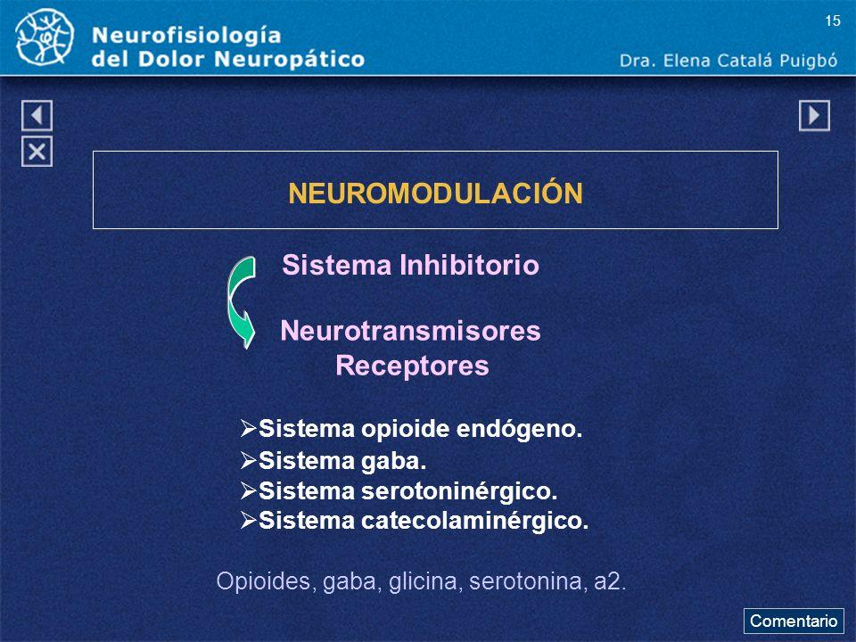 NEUROMODULACIÓN Sistema Inhibitorio Sistema opioide endógeno. Sistema gaba. Sistema serotoninérgico. Sistema catecolaminérgico. Opioides, gaba, glicin