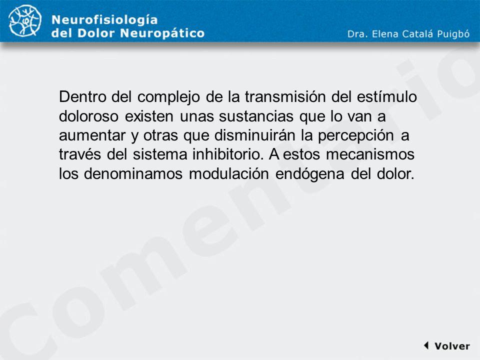 Comentario a diapo13 Dentro del complejo de la transmisión del estímulo doloroso existen unas sustancias que lo van a aumentar y otras que disminuirán