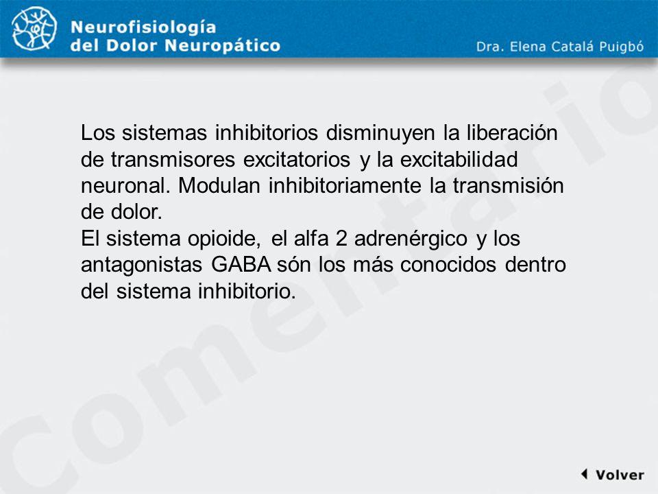 Comentario a diapo17 Los sistemas inhibitorios disminuyen la liberación de transmisores excitatorios y la excitabilidad neuronal. Modulan inhibitoriam