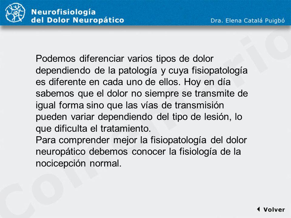 Comentario a diapo19 Podemos diferenciar varios tipos de dolor dependiendo de la patología y cuya fisiopatología es diferente en cada uno de ellos. Ho