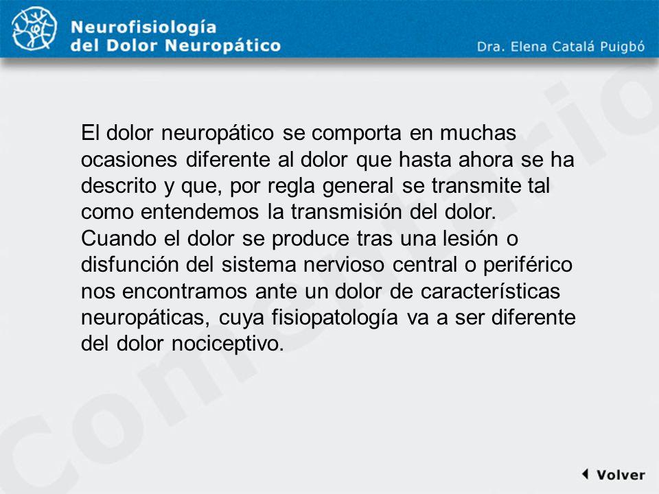 Comentario a diapo22 El dolor neuropático se comporta en muchas ocasiones diferente al dolor que hasta ahora se ha descrito y que, por regla general s