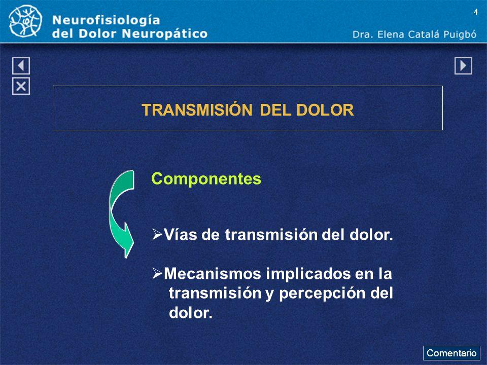 Componentes TRANSMISIÓN DEL DOLOR Vías de transmisión del dolor. Mecanismos implicados en la transmisión y percepción del dolor. Comentario 4