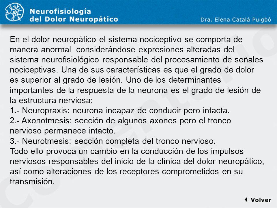 Comentario a diapo23 En el dolor neuropático el sistema nociceptivo se comporta de manera anormal considerándose expresiones alteradas del sistema neu