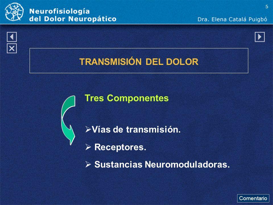 Tres Componentes TRANSMISIÓN DEL DOLOR Vías de transmisión. Receptores. Sustancias Neuromoduladoras. Comentario 5