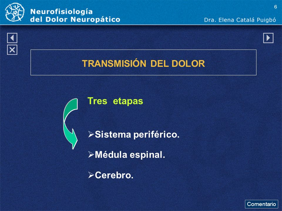 Fibras Nerviosas VÍAS DE TRANSMISIÓN * A DELTA mielínicas * C amielínicas El 80% del dolor está vehiculizado por fibras C dolor difuso, desagradable.
