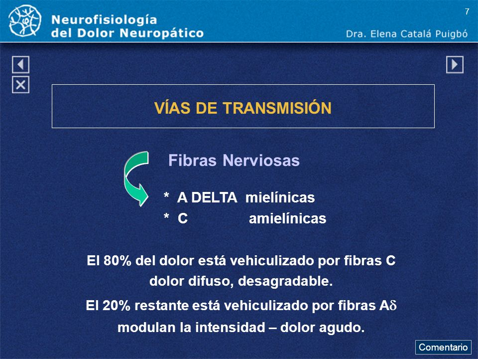 Comentario a diapo12 La sensación de dolor comprende dos componentes, uno sensorial y otro afectivo siendo las áreas del complejo ventro-basal del tálamo y el área somato estética S1 de la corteza cerebral las responsables.