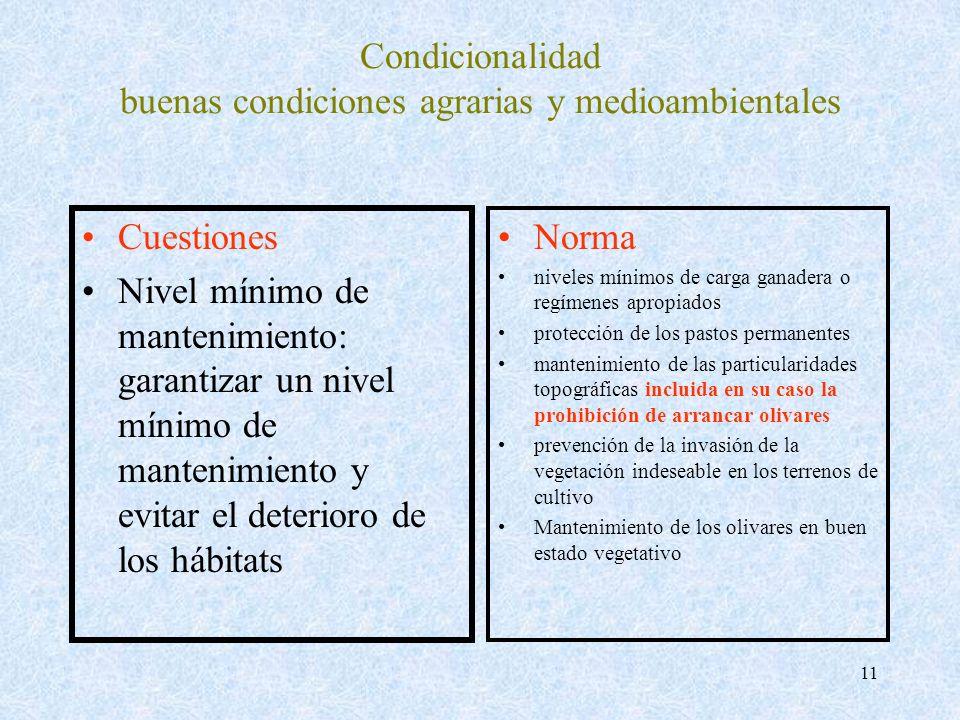 11 Condicionalidad buenas condiciones agrarias y medioambientales Cuestiones Nivel mínimo de mantenimiento: garantizar un nivel mínimo de mantenimient