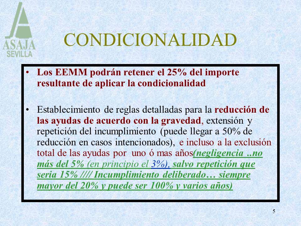 5 CONDICIONALIDAD Los EEMM podrán retener el 25% del importe resultante de aplicar la condicionalidad Establecimiento de reglas detalladas para la red