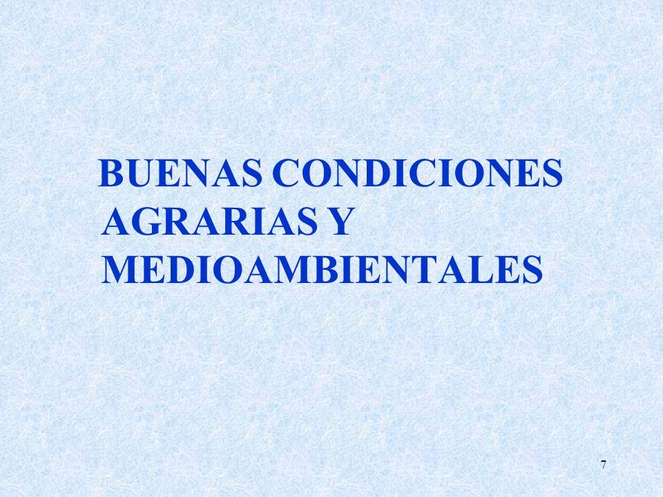 28 ANEJO III (requisitos legales de gestion) Especial incidencia en zonas afectadas por Directiva Nitratos y en zonas contempladas en RED NATURA ADEMAS de las BPA: * las explotaciones agricolas en zonas Red Natura (en principio ZEPAS), deben cumplir : - Establecimiento de calendarios de recolección (NO ANTES DE..) y retirada de la paja y restos de cosecha (ANTES DE..) - Obligaciones adicionales en retiradas y barbechos - Regulación altura corte cosechadora (15 CMS MINIMO) - Obligatoriedad PI en arroz: DADA LA ESPECIFICIDAD DEL CULTIVO DEL ARROZAL ANDALUZ QUE SE ENCUENTRA UBICADO EN SU TOTALIDAD EN ZONAS PROTEGIDAS, EN EL MISMO LAS PRACTICAS AGRICOLAS SE REALIZARAN DE ACUERDO CON LOS METODOS DE PRODUCCION INTEGRADA * Cumplimiento Programa Actuación en explotaciones incluidas zonas vulnerables a la Contaminación de Nitratos (a nivel de terminos municipales)