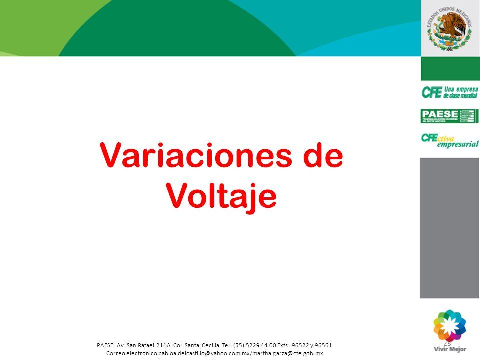 28 PAESE Av. San Rafael 211A Col. Santa Cecilia Tel. (55) 5229 44 00 Exts. 96522 y 96561 Correo electrónico pabloa.delcastillo@yahoo.com.mx/martha.gar