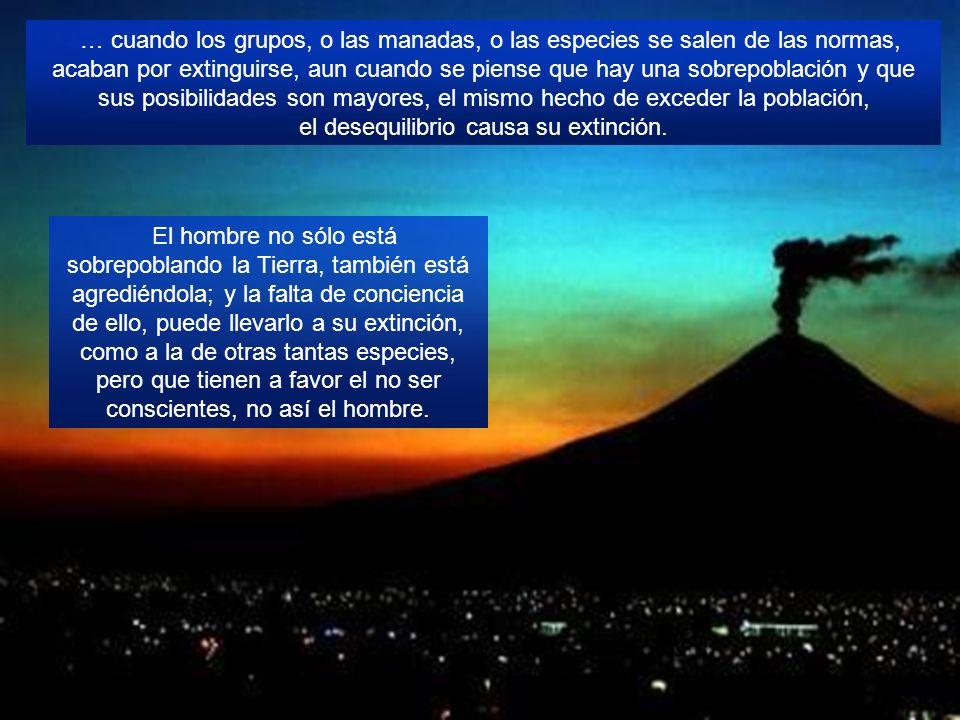 Maestro y Padre Eterno ¿Algún día veremos al Popocatépetl como hace unos años, que no tenía fumarolas, ni actividad? Todo es cíclico, puede llegar a t