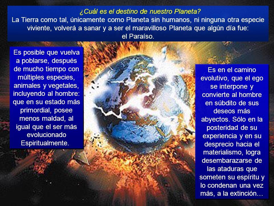 … la conciencia del despertar al amor Universal: mirarse unos a otros, con compasión y fraternidad, puede evitar el tan temido 2012, como profecías ca