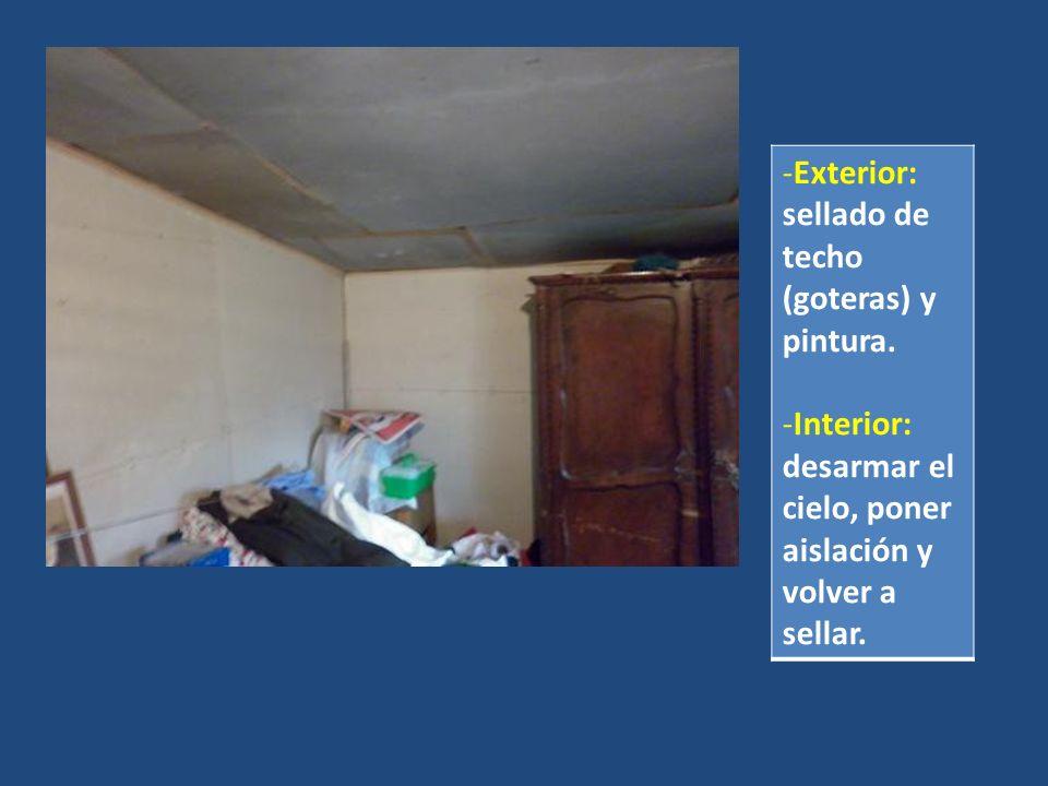 -Exterior: sellado de techo (goteras) y pintura. -Interior: desarmar el cielo, poner aislación y volver a sellar.