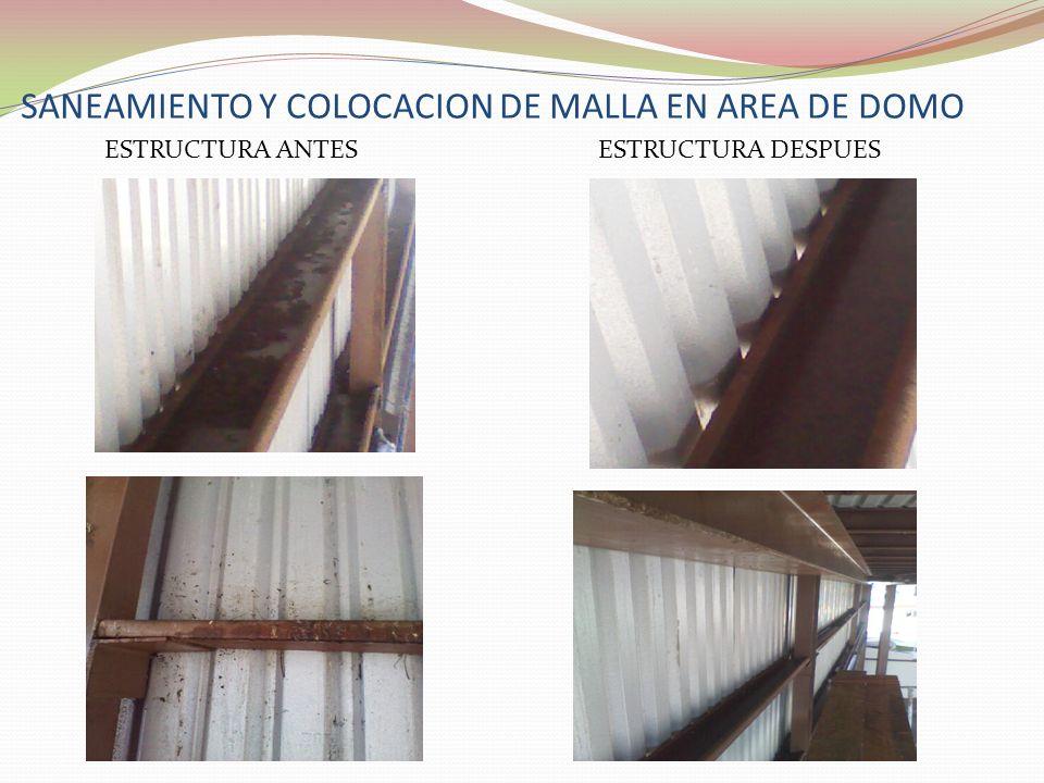 SANEAMIENTO Y COLOCACION DE MALLA EN AREA DE DOMO ESTRUCTURA ANTESESTRUCTURA DESPUES