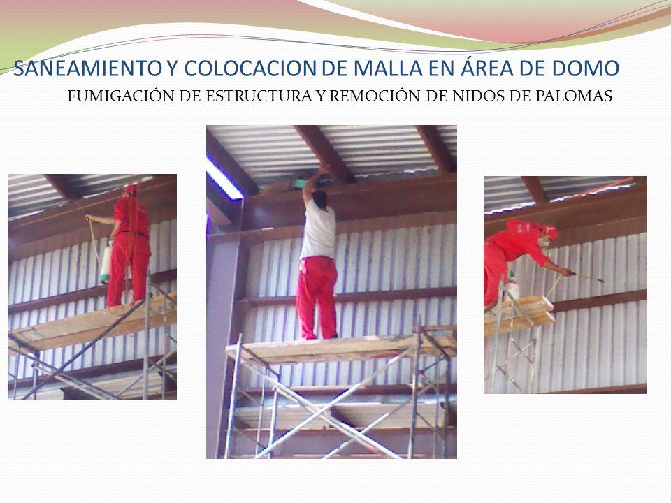 SANEAMIENTO Y COLOCACION DE MALLA EN ÁREA DE DOMO FUMIGACIÓN DE ESTRUCTURA Y REMOCIÓN DE NIDOS DE PALOMAS