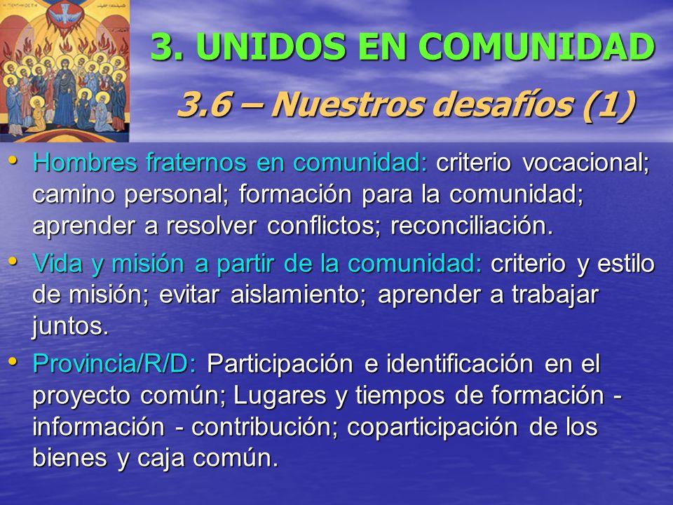 3. UNIDOS EN COMUNIDAD 3.6 – Nuestros desafíos (1) Hombres fraternos en comunidad: criterio vocacional; camino personal; formación para la comunidad;