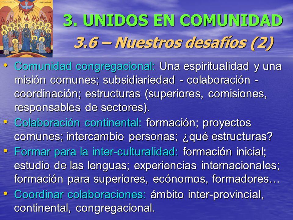 3. UNIDOS EN COMUNIDAD 3.6 – Nuestros desafíos (2) Comunidad congregacional: Una espiritualidad y una misión comunes; subsidiariedad - colaboración -