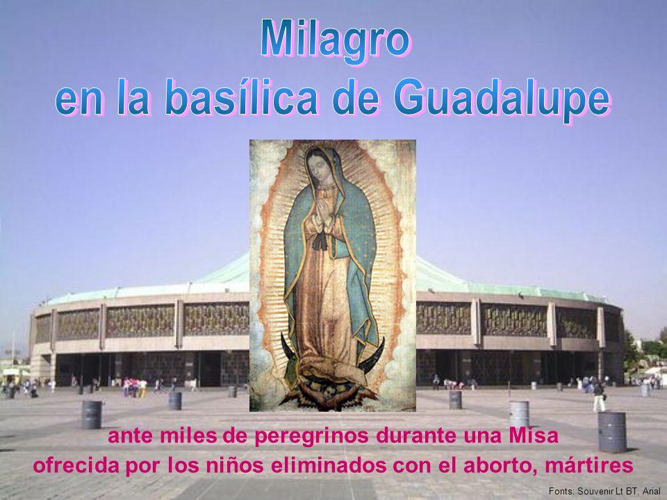 ante miles de peregrinos durante una Misa ofrecida por los niños eliminados con el aborto, mártires Fonts: Souvenir Lt BT, Arial