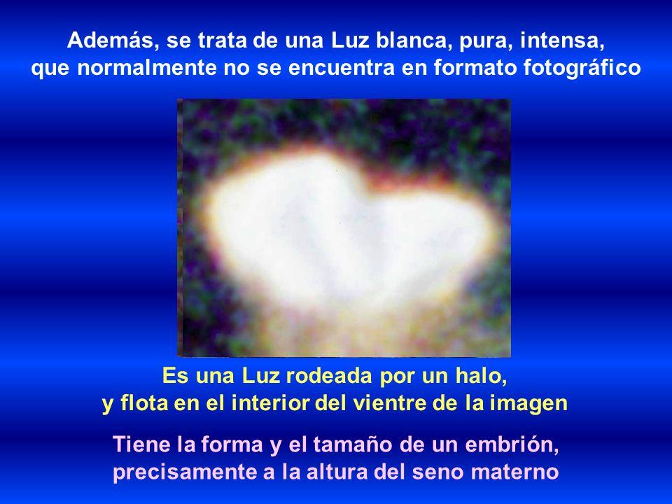 Es una Luz rodeada por un halo, y flota en el interior del vientre de la imagen Además, se trata de una Luz blanca, pura, intensa, que normalmente no