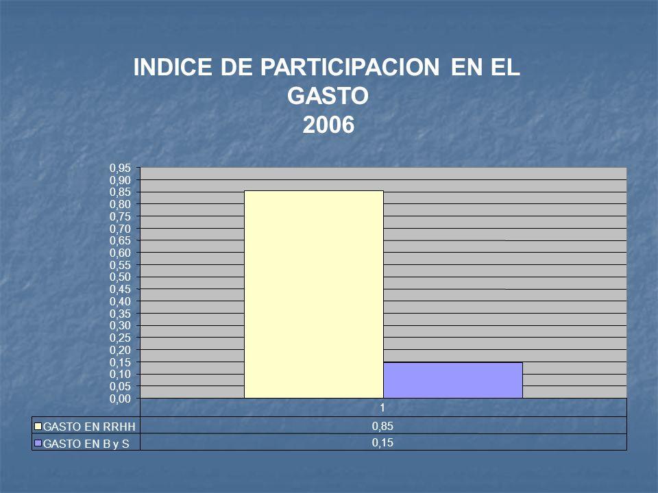 INDICE DE PARTICIPACION EN EL GASTO 2006 0,00 0,05 0,10 0,15 0,20 0,25 0,30 0,35 0,40 0,45 0,50 0,55 0,60 0,65 0,70 0,75 0,80 0,85 0,90 0,95 GASTO EN RRHH 0,85 GASTO EN B y S 0,15 1