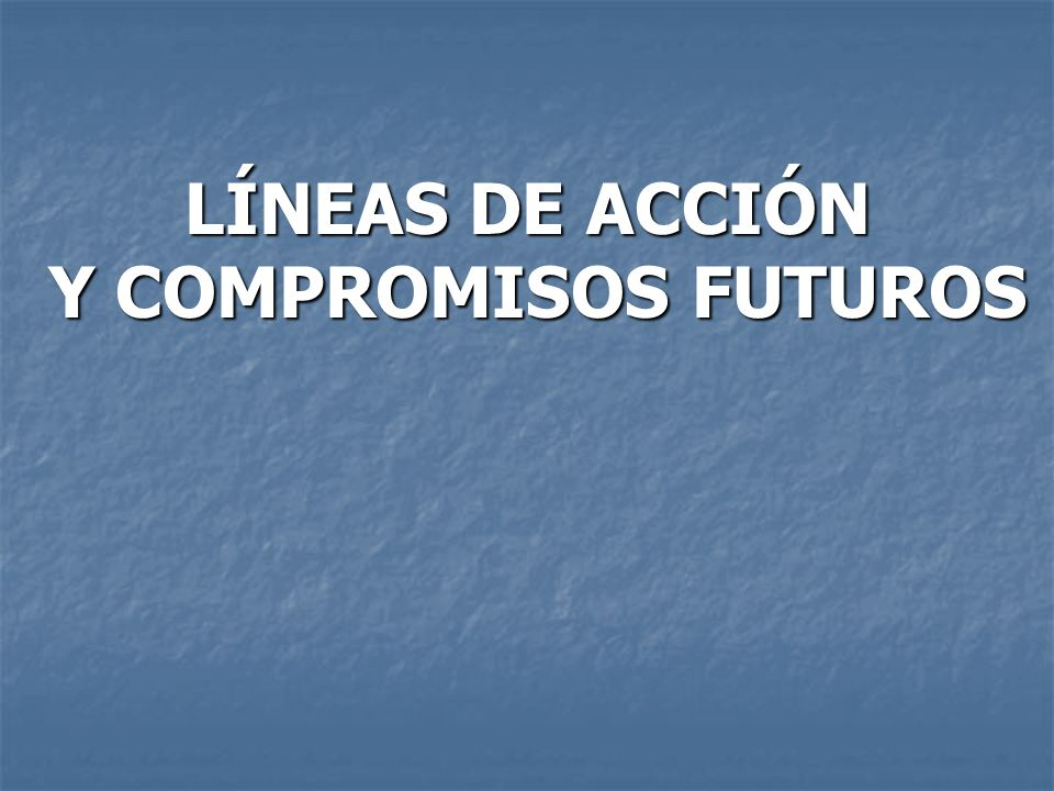 LÍNEAS DE ACCIÓN Y COMPROMISOS FUTUROS Y COMPROMISOS FUTUROS