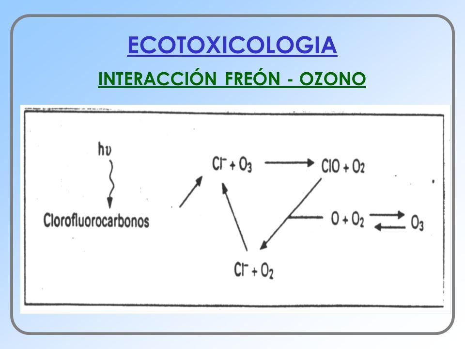 ECOTOXICOLOGIA INTERACCIÓN FREÓN - OZONO