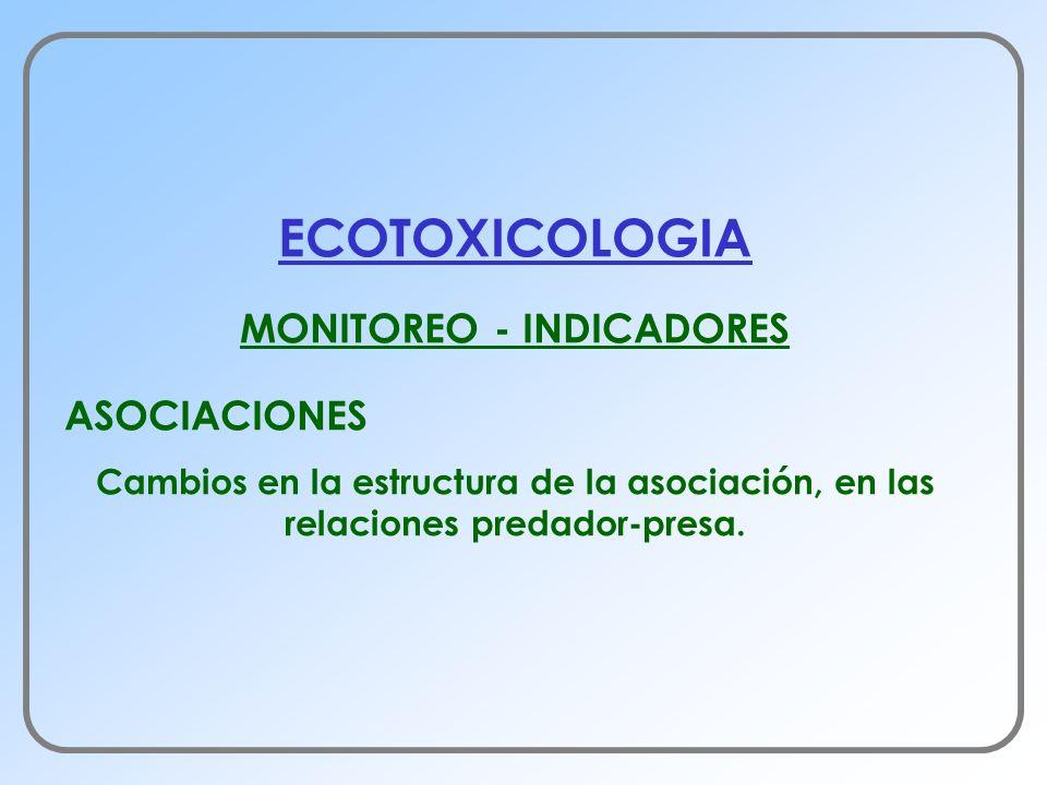 ECOTOXICOLOGIA MONITOREO - INDICADORES ASOCIACIONES Cambios en la estructura de la asociación, en las relaciones predador-presa.