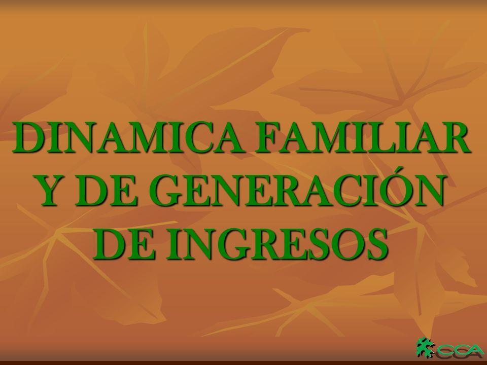 DINAMICA FAMILIAR Y DE GENERACIÓN DE INGRESOS